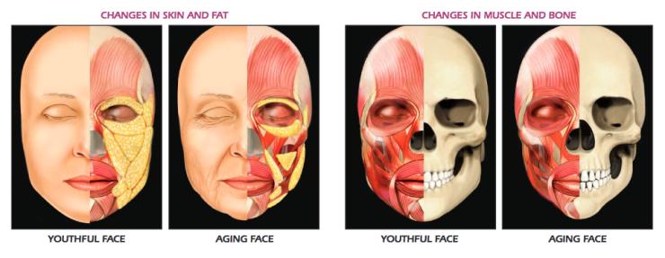 agingfacepicture.png